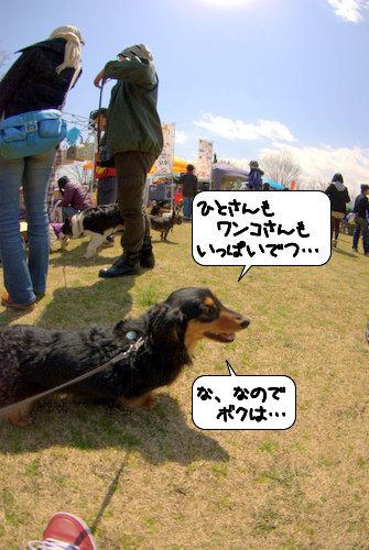 20120402_135501.jpg