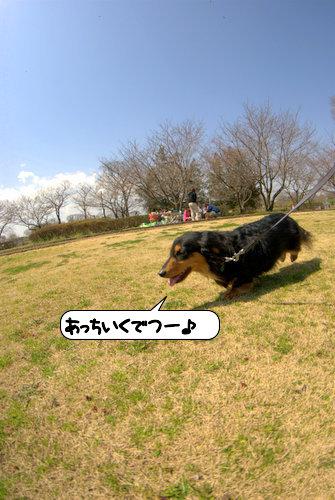 20120403_130608.jpg
