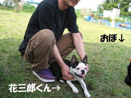 1009-3 dogrun9