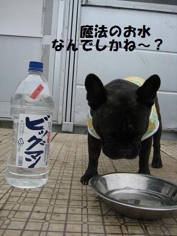 魔法の水5