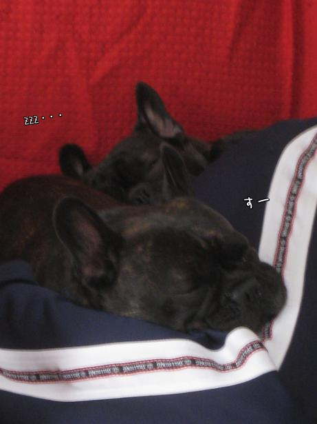 相方と寝5