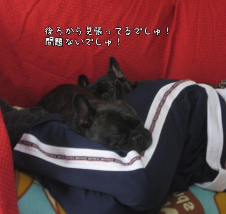 相方と寝4