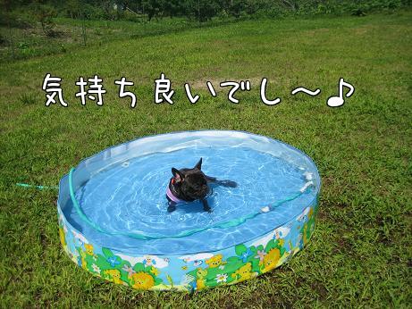 水にドブン4