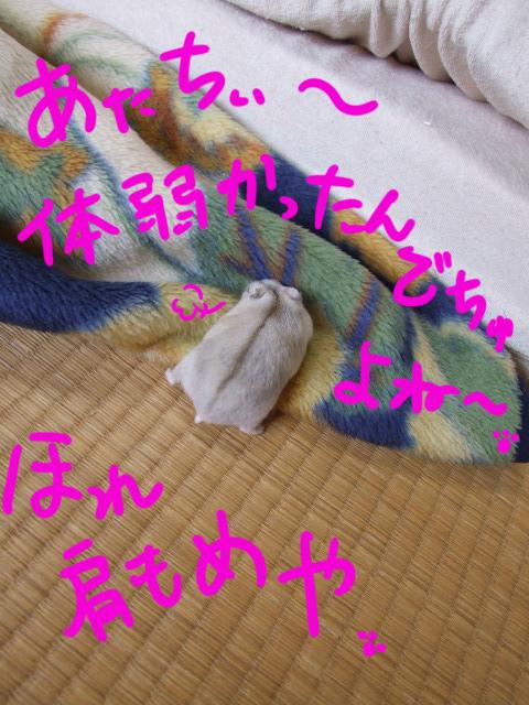 DSCF090624b5535.jpg