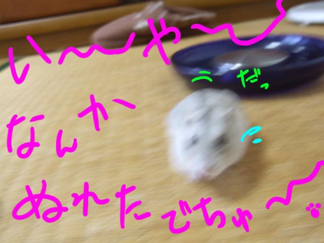DSCF090819f8569.jpg