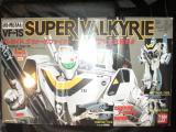 コピー ~ DSC00155