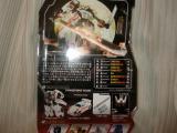 コピー ~ DSC00313