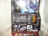 コピー ~ DSC00489