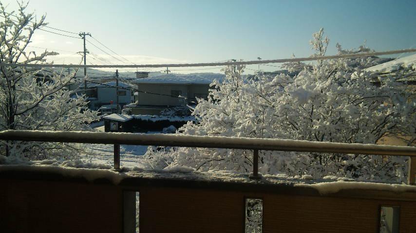 100108_雪その2