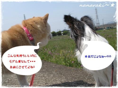 なならき4☆