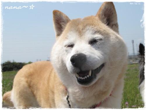 ナナ笑顔☆