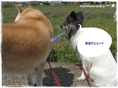 なならき1☆