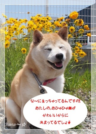 ナナさん笑顔☆