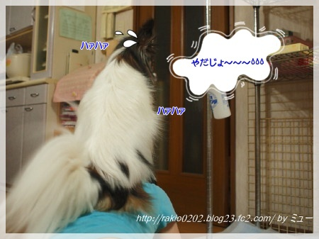 らきお君3★