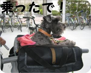 jitensha1