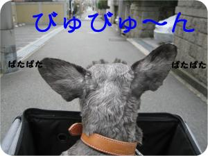 jitensha 2
