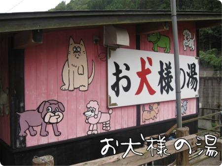 09.9.24.1犬の湯