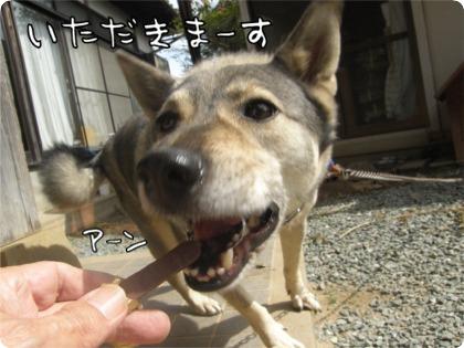 09.10.14.5元気
