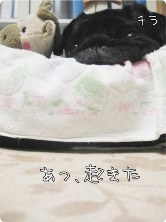 09.10.16.5ラン丸