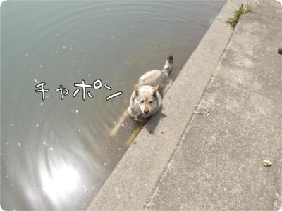 10.5.14.1げんき