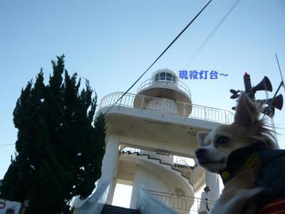 r591_20081205180504.jpg
