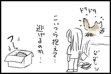 090913-7.jpg