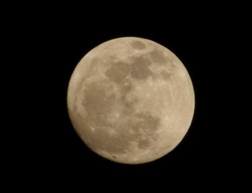 ブンちゃんの月