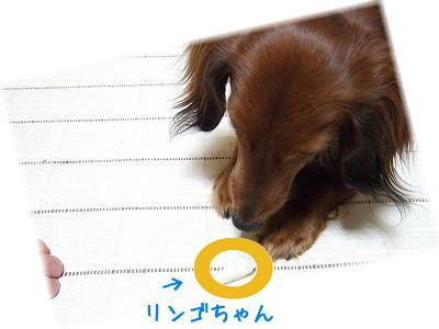 シミよか食べたいなり。