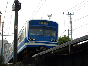 P5047507.jpg