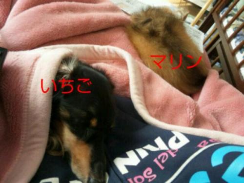 20111004_081413.jpg