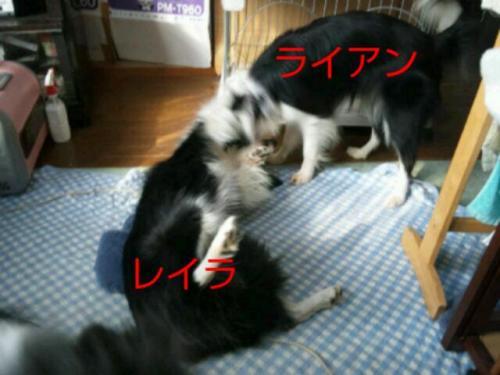 20111004_083946.jpg