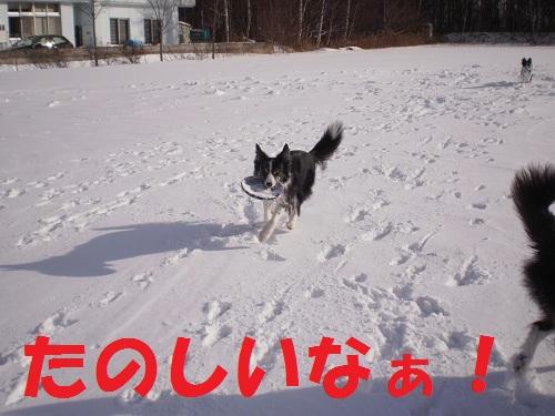201112133.jpg