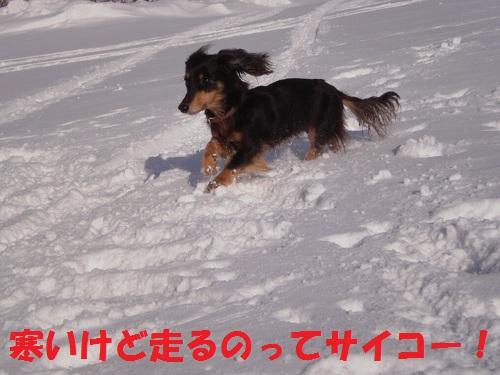 201112134.jpg