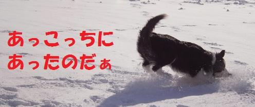 201112138.jpg