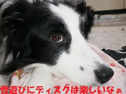 201112139.jpg