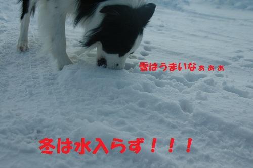 201112159.jpg