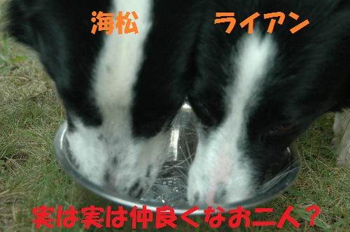 20118144.jpg