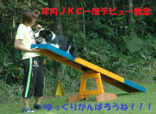 20118711.jpg