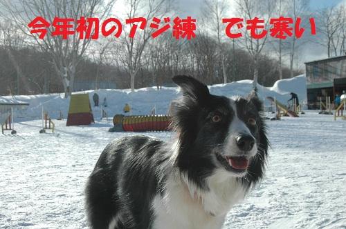 20121141.jpg