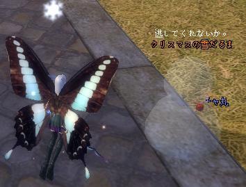 2008-12-19.jpg