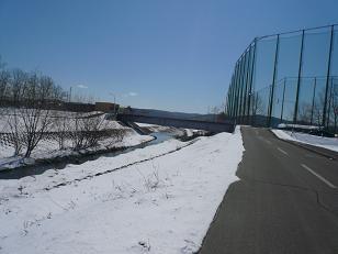 2010482.jpg