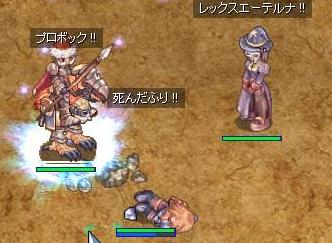 RO ハイノビ死んだフリ