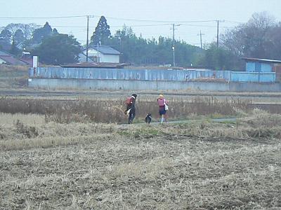 P1410336s.jpg