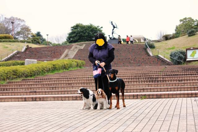青葉の森公園2010 068