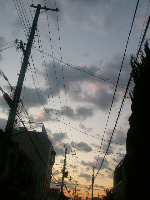 PC207987.jpg