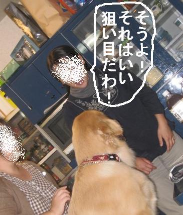 091031IMG_3404.jpg