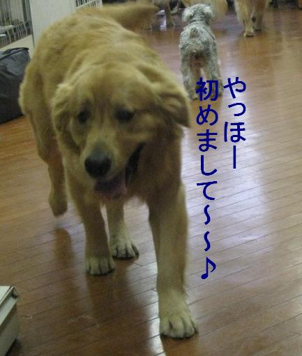 091101IMG_3503.jpg