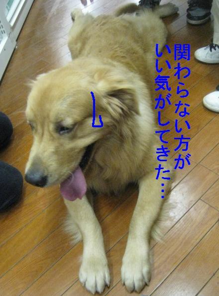 091101IMG_3506.jpg