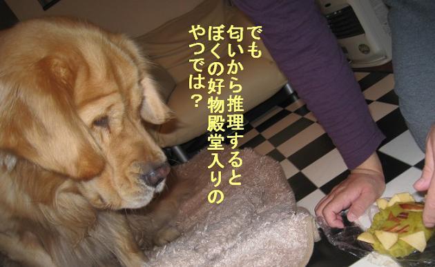 091107IMG_3624.jpg