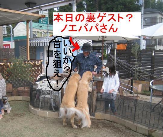 09IMG_3267.jpg